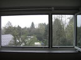 Katzennetz Katzengitter Für Fenster Katzennetze Nrw Der