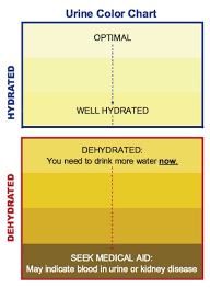 Kidney Failure Urine Color Chart Hows Your Urine Boise Run Walk