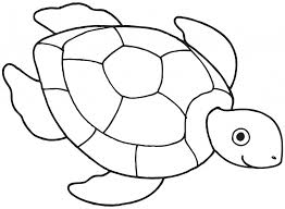 Small Picture Simple Drawing Of A Turtle How To Draw A Sea Turtle Cartoon Sea