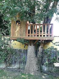 kids tree house. Tree House Kits For Kids Cheap Plans Awesome Formidable E Wooden H 9