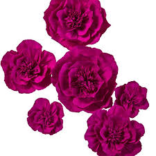 Paper Flower Archway Lings Moment Large Crepe Paper Flowers 6 X Rose