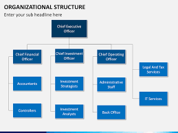 Coo Org Chart Organizational Structure