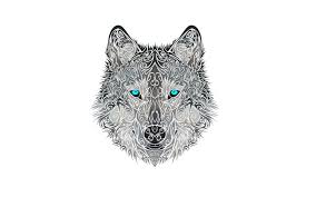 Wolf Drawing Wallpaper posted by ...