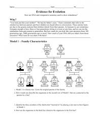 Evidence For Evolution Worksheet Answers Image HD of evidence for ...