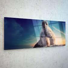 176 best 125x50cm glass printed wall art images on tempered glass wall art