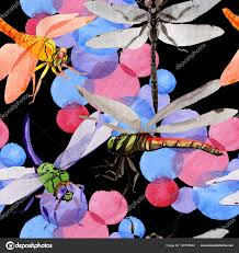 Exotické Dragonfly Divoké Hmyzu Vzor Ve Stylu Akvarelu Stock