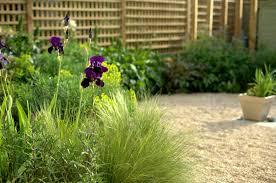 A Small Gravel Garden Paul Ridley Garden Design Oxford New Gravel Garden Design
