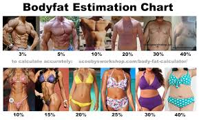 Body Fat Chart Women Body Fat Estimation Chart Men Women Scoobys Home Workouts