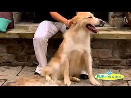 <b>FURminator Long Hair</b> Dog Grooming Tool - YouTube