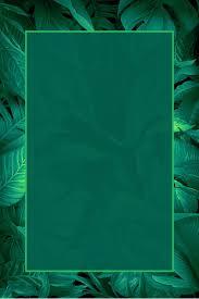 Green Leaf Poster Background