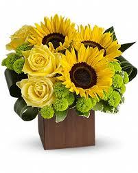 teleflora s sunflower fantasy