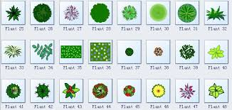 Small Picture Simple Garden Design Software Make Great looking Garden Design