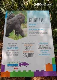 zoo exhibit sign.  Zoo Lego Gorilla Sign For Zoo Exhibit Sign E