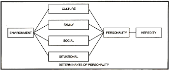 essay on personality  meaning  nature and determinantsdeterminants of personality