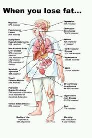 Healthy Living Chart When You Lose Fat Chart Indulge In Healthy Living