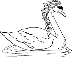 Small Picture Swan clipart coloring page Pencil and in color swan clipart