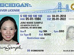 Real Licenses Mi Patch Michigan Compliant Issuing Id Detroit
