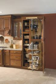 Pots and pans organizer. Discreet and effective. Kitchen Cabinet ...