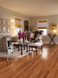Laminate Flooring In Kitchens Laminate Flooring For Kitchen And Bathroom All About Flooring