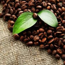 coffee beans. Exellent Coffee Organic Coffee Beans Throughout A