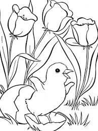 Small Picture Spring Coloring Pages Printable Free In Cute Spring Coloring Pages