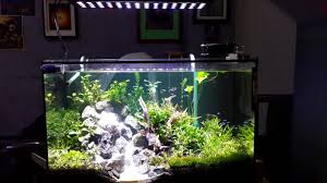 freshwater planted tank led pendants
