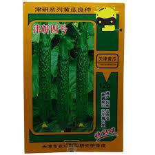 Acquista allingrosso online lungo verde cetriolo da grossisti