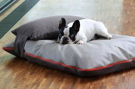Head pillow for all dog cushions.