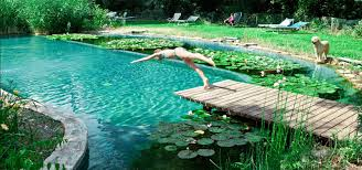 9 tips tricks for building out your diy natural swimming pool poolonomics