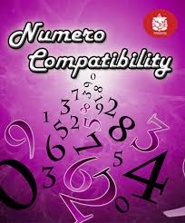 Numerology Love Compatibility Chart Free Numerology Compatibility Calculator Check How