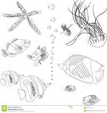 Elegante Disegni Per Bambini Da Colorare Pesci Anemoni Stelle Marine