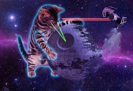 cats shooting lasers out of their eyes. Delighful Cats CAT 05 The Death Star And Cats Shooting Lasers Out Of Their Eyes 2