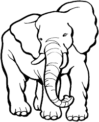 baby elephant coloring pages print color best coloring pages