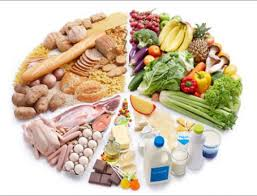 essay nutrition health and well being the patang nutrition health and well being