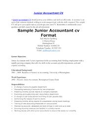 Junior Accountant Resume Pdf Sidemcicek Com