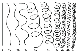 4c Chart Look At The Hair Type Chart Type 4c Is Also A Coil Its