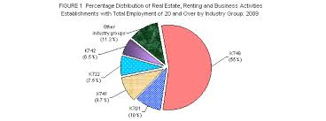 Real Estate Renting 2009 Annual Survey Of Philippine Business And Industry Aspbi