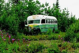 what really drove christopher mccandless into the wild bus 142