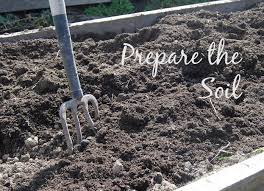 preparing soil for garden