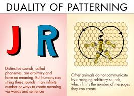 Duality Of Patterning Classy The Difference Between Animal And Human Communication Owlcation