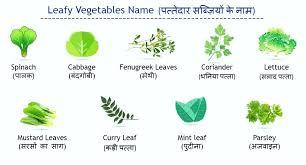 Vegetables Name English To Hindi Boyer Cool Com