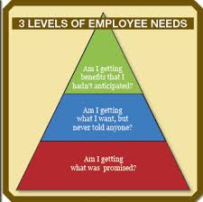 The Secret Behind Sustainable Employee Engagement A