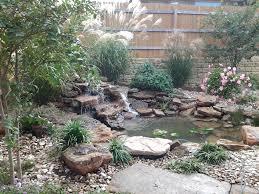 landscape design water garden austin tx 2