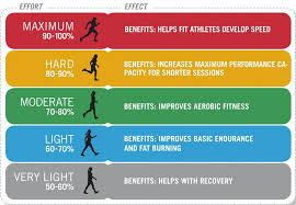 Aerobic Workout Heart Rate Chart Training Tip Using Heart Rate Zones For Maximum