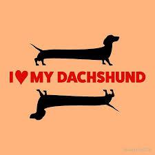 Jumping Dog Design I Love My Dachshund Black Funny Cute Sausage Dog Design