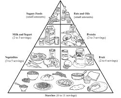 Small Picture Emejing Food Pyramid Coloring Page Images Printable Coloring