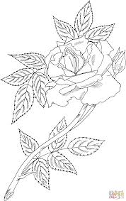 Small Picture Royal Sunset Climbing Rose coloring page Free Printable Coloring