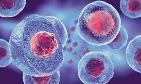 Stem cells are sourced from inside the patient, there is no ethical dilemma