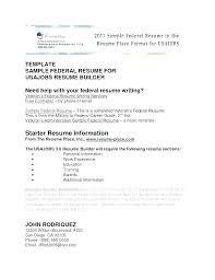 American Style Resume Template American Cv Template Resume Template Example Team Member Sample