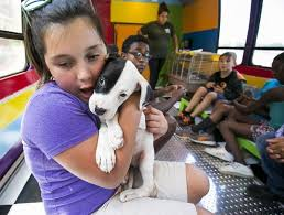 Magic Bark Bus' helps kids care for animals - News - - ,